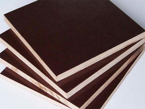 Shuttering Plywood Pacificply